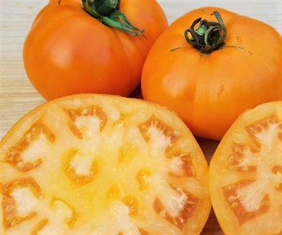 Orangene_Mittelgroße_Fleischtomate