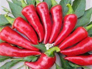 Paprika Chili Sipak Ljuti