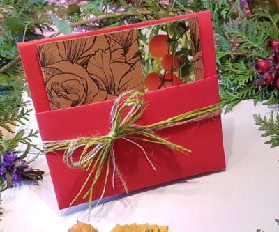Geschenkidee für Gärtner, Tomaten Set zum Auswählen Verpackung