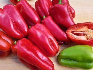 Paprika Bulgarischer Paprika rot